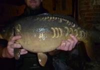 combley 2014 c2 an fish for sale 101
