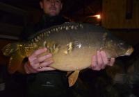 combley 2014 c2 an fish for sale 104