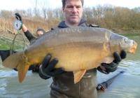 Carp For Sale, Combley Carp Fisheries